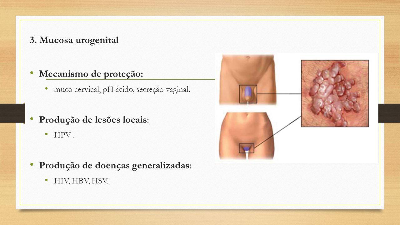 3. Mucosa urogenital Mecanismo de proteção: muco cervical, pH ácido, secreção vaginal. Produção de lesões locais: HPV. Produção de doenças generalizad