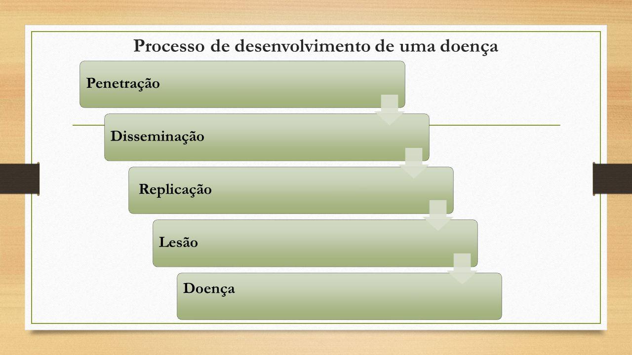 Processo de desenvolvimento de uma doença PenetraçãoDisseminação ReplicaçãoLesão Doença