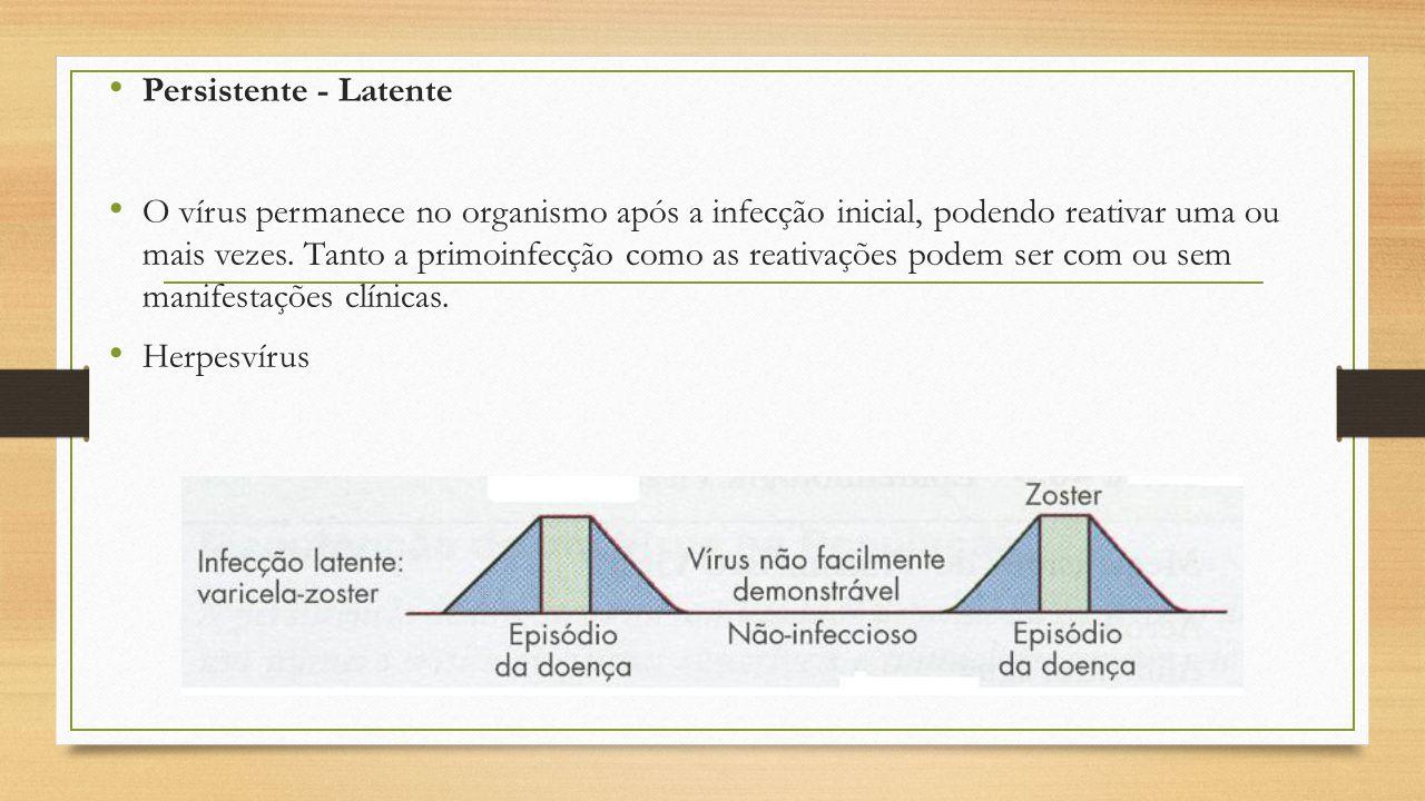 Persistente - Latente O vírus permanece no organismo após a infecção inicial, podendo reativar uma ou mais vezes. Tanto a primoinfecção como as reativ