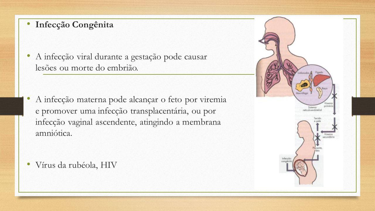 Infecção Congênita A infecção viral durante a gestação pode causar lesões ou morte do embrião. A infecção materna pode alcançar o feto por viremia e p