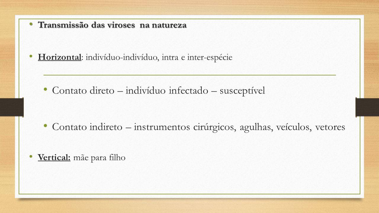 Transmissão das viroses na natureza Transmissão das viroses na natureza Horizontal: indivíduo-indivíduo, intra e inter-espécie Contato direto – indiví