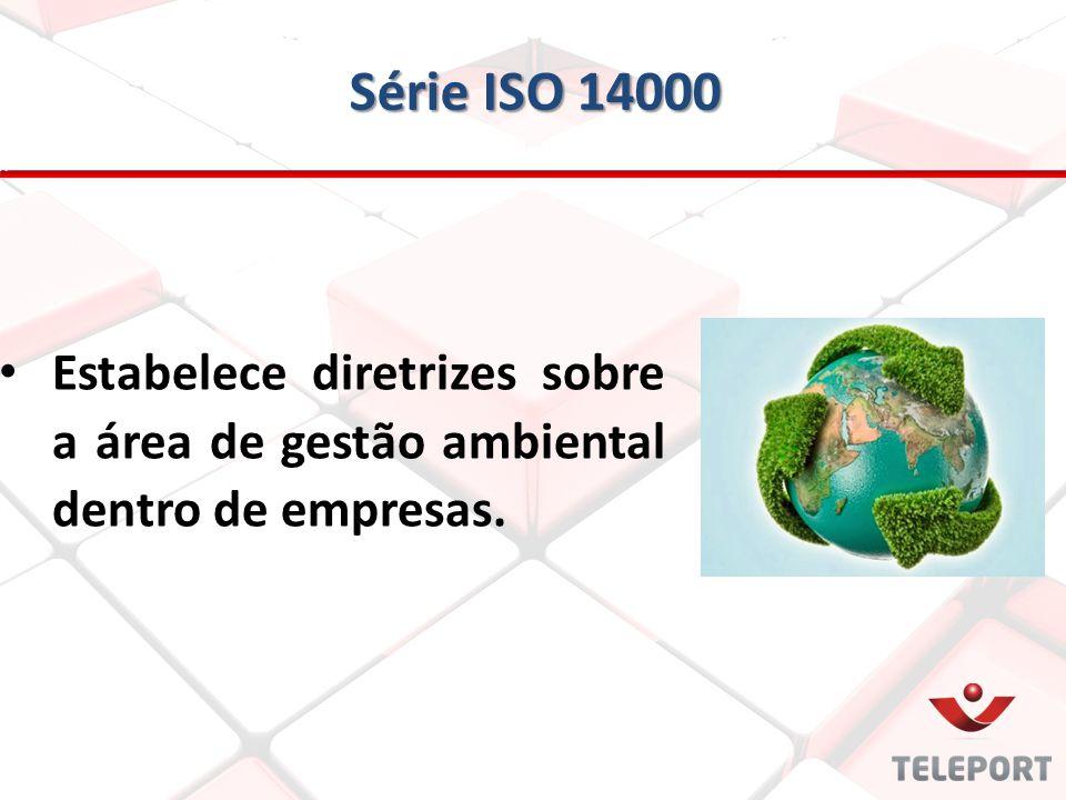 Série ISO 14000 Estabelece diretrizes sobre a área de gestão ambiental dentro de empresas.