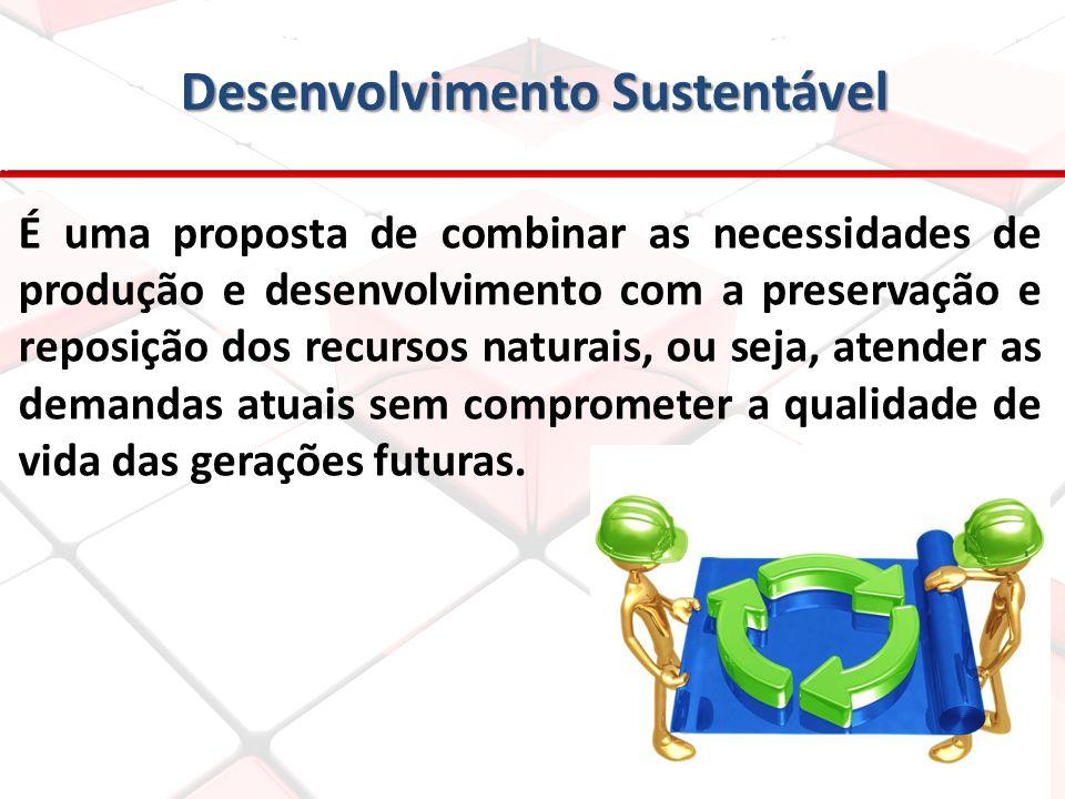 Desenvolvimento Sustentável É uma proposta de combinar as necessidades de produção e desenvolvimento com a preservação e reposição dos recursos natura