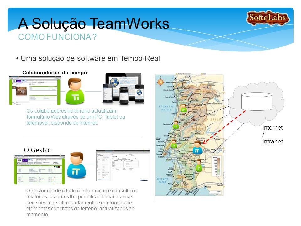 A Solução TeamWorks COMO FUNCIONA .