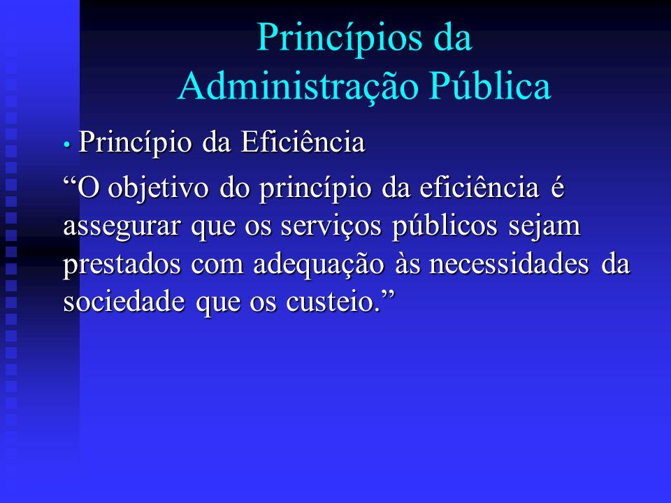 """Princípios da Administração Pública Princípio da Eficiência Princípio da Eficiência """"O objetivo do princípio da eficiência é assegurar que os serviços"""