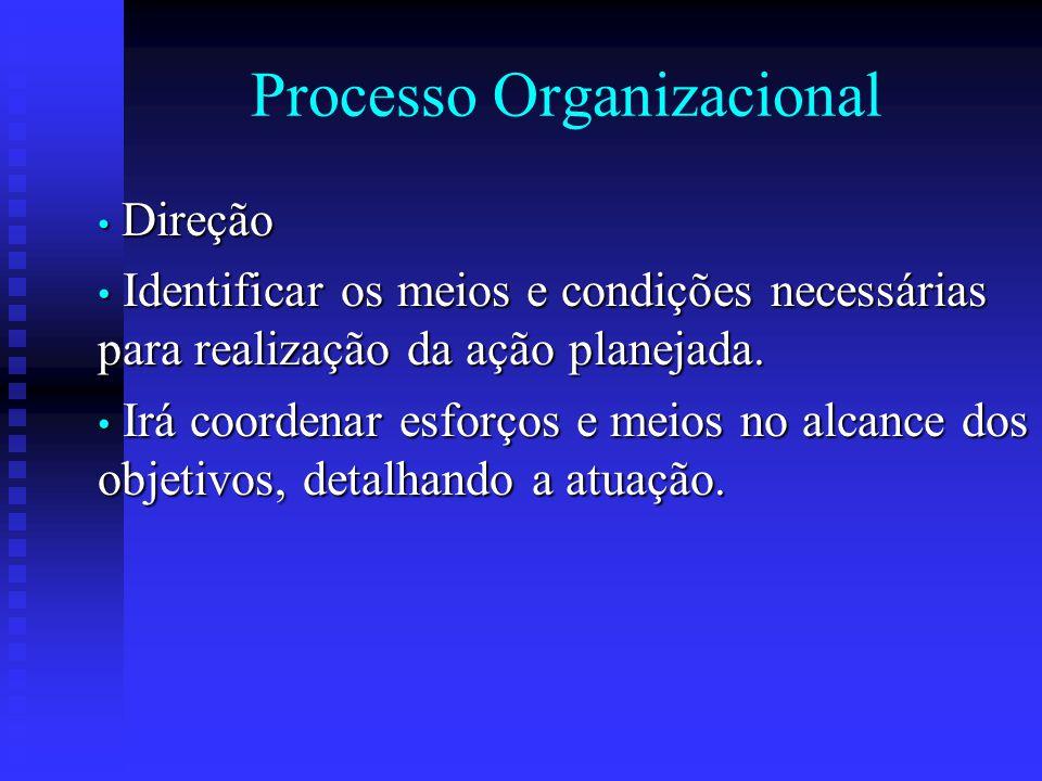 Processo Organizacional Direção Direção Identificar os meios e condições necessárias para realização da ação planejada. Identificar os meios e condiçõ