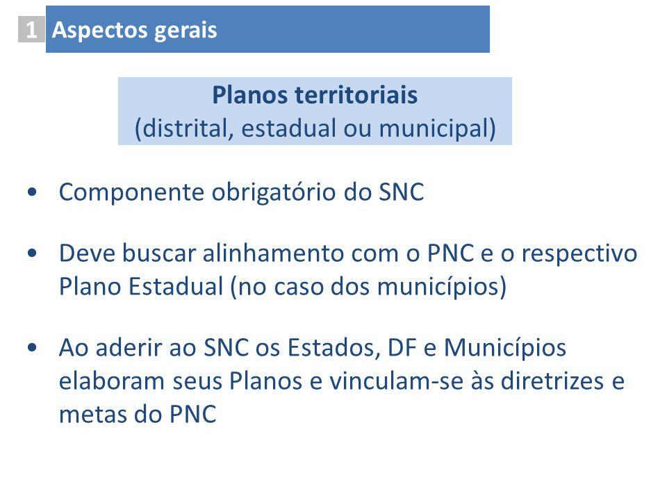 Componente obrigatório do SNC Deve buscar alinhamento com o PNC e o respectivo Plano Estadual (no caso dos municípios) Ao aderir ao SNC os Estados, DF