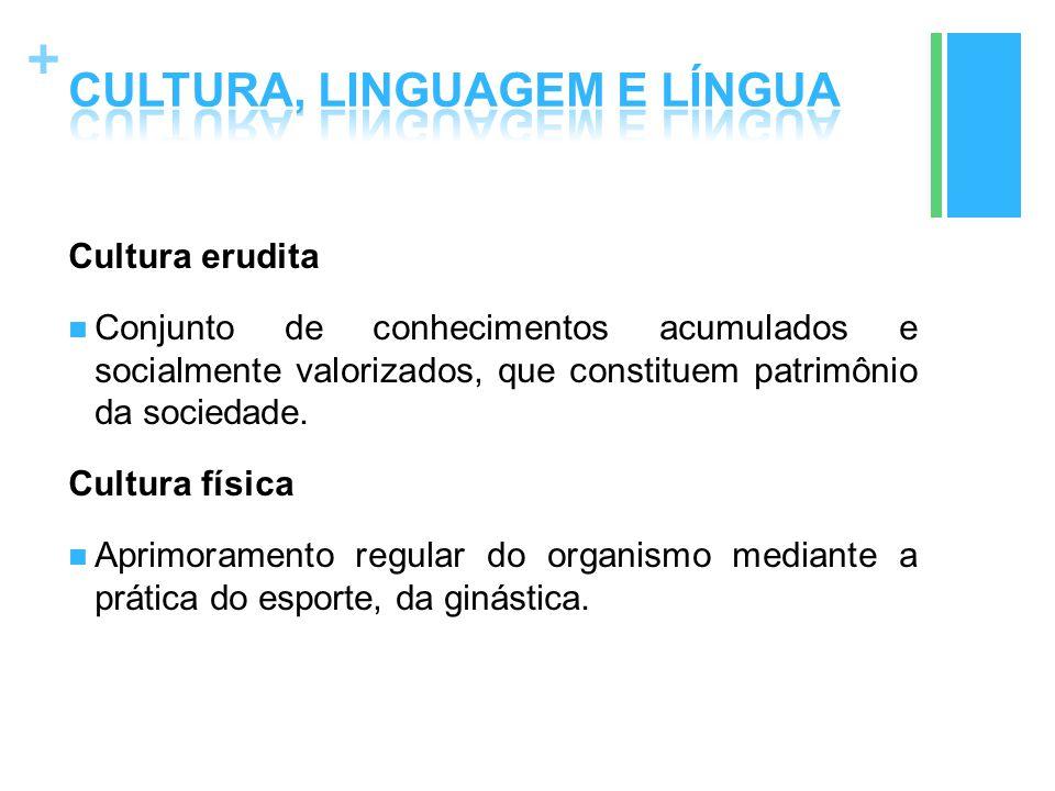 + Cultura erudita Conjunto de conhecimentos acumulados e socialmente valorizados, que constituem patrimônio da sociedade. Cultura física Aprimoramento