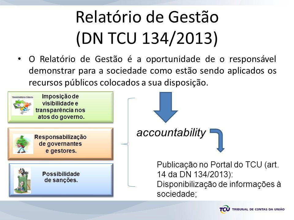 Relatório de Gestão (DN TCU 134/2013) O Relatório de Gestão é a oportunidade de o responsável demonstrar para a sociedade como estão sendo aplicados os recursos públicos colocados a sua disposição.