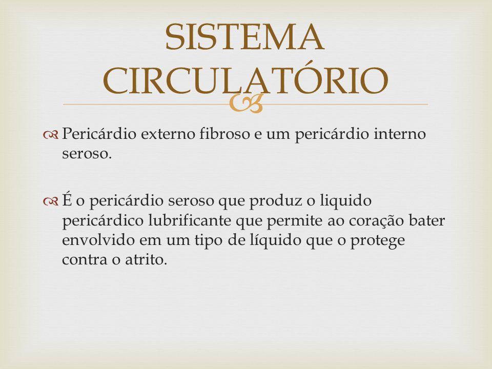   Pericárdio externo fibroso e um pericárdio interno seroso.