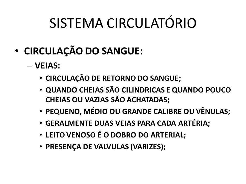 SISTEMA CIRCULATÓRIO CIRCULAÇÃO DO SANGUE: –V–VEIAS: CIRCULAÇÃO DE RETORNO DO SANGUE; QUANDO CHEIAS SÃO CILINDRICAS E QUANDO POUCO CHEIAS OU VAZIAS SÃO ACHATADAS; PEQUENO, MÉDIO OU GRANDE CALIBRE OU VÊNULAS; GERALMENTE DUAS VEIAS PARA CADA ARTÉRIA; LEITO VENOSO É O DOBRO DO ARTERIAL; PRESENÇA DE VALVULAS (VARIZES);