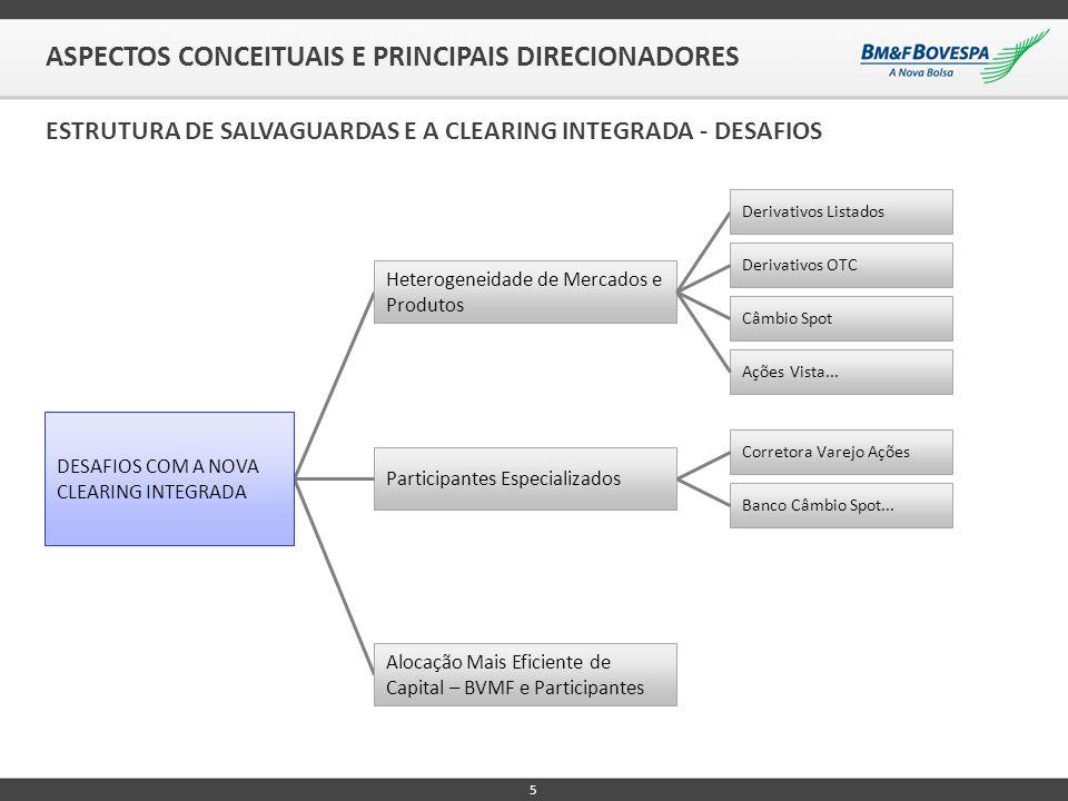 5 ASPECTOS CONCEITUAIS E PRINCIPAIS DIRECIONADORES ESTRUTURA DE SALVAGUARDAS E A CLEARING INTEGRADA - DESAFIOS Heterogeneidade de Mercados e Produtos