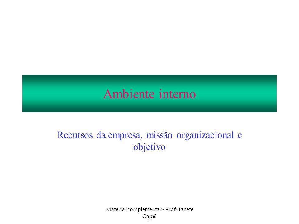 Material complementar - Profª Janete Capel Ambiente interno Recursos da empresa, missão organizacional e objetivo