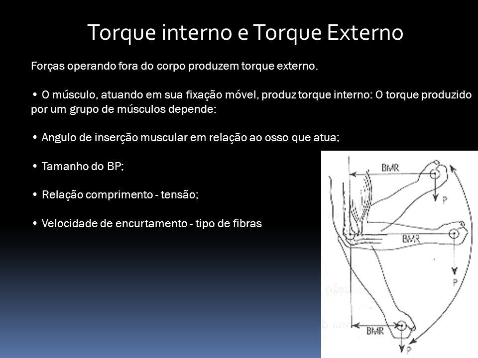 Torque interno e Torque Externo Forças operando fora do corpo produzem torque externo.