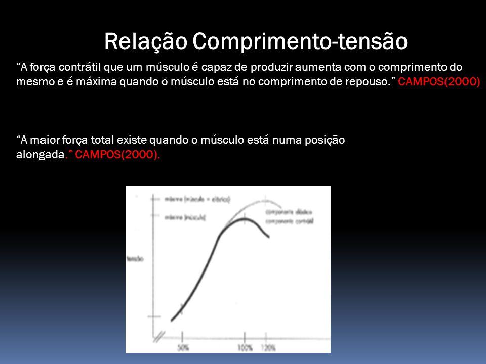 Relação Comprimento-tensão A força contrátil que um músculo é capaz de produzir aumenta com o comprimento do mesmo e é máxima quando o músculo está no comprimento de repouso. CAMPOS(2000) A maior força total existe quando o músculo está numa posição alongada. CAMPOS(2000).