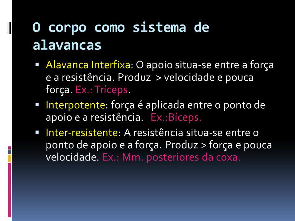 O corpo como sistema de alavancas  Alavanca Interfixa: O apoio situa-se entre a força e a resistência.