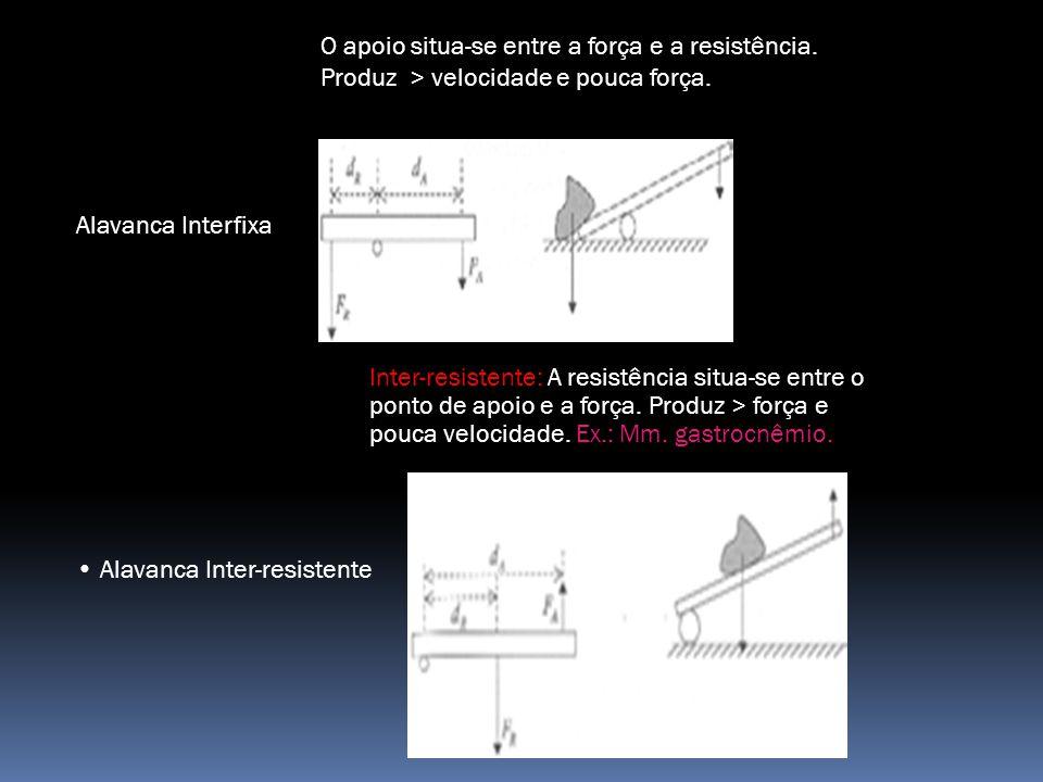 Alavanca Interfixa Alavanca Inter-resistente O apoio situa-se entre a força e a resistência.