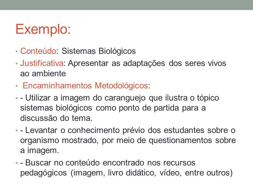 Exemplo: Conteúdo: Sistemas Biológicos Justificativa: Apresentar as adaptações dos seres vivos ao ambiente Encaminhamentos Metodológicos: - Utilizar a