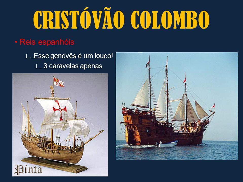 Reis espanhóis ∟ Esse genovês é um louco! ∟ 3 caravelas apenas CRISTÓVÃO COLOMBO