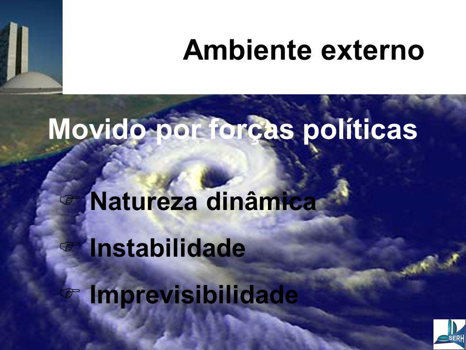 Ambiente externo  Natureza dinâmica  Instabilidade  Imprevisibilidade Movido por forças políticas