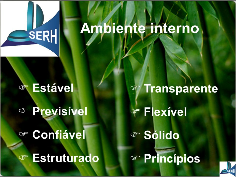 Ambiente interno  Transparente  Flexível  Sólido  Princípios  Estável  Previsível  Confiável  Estruturado