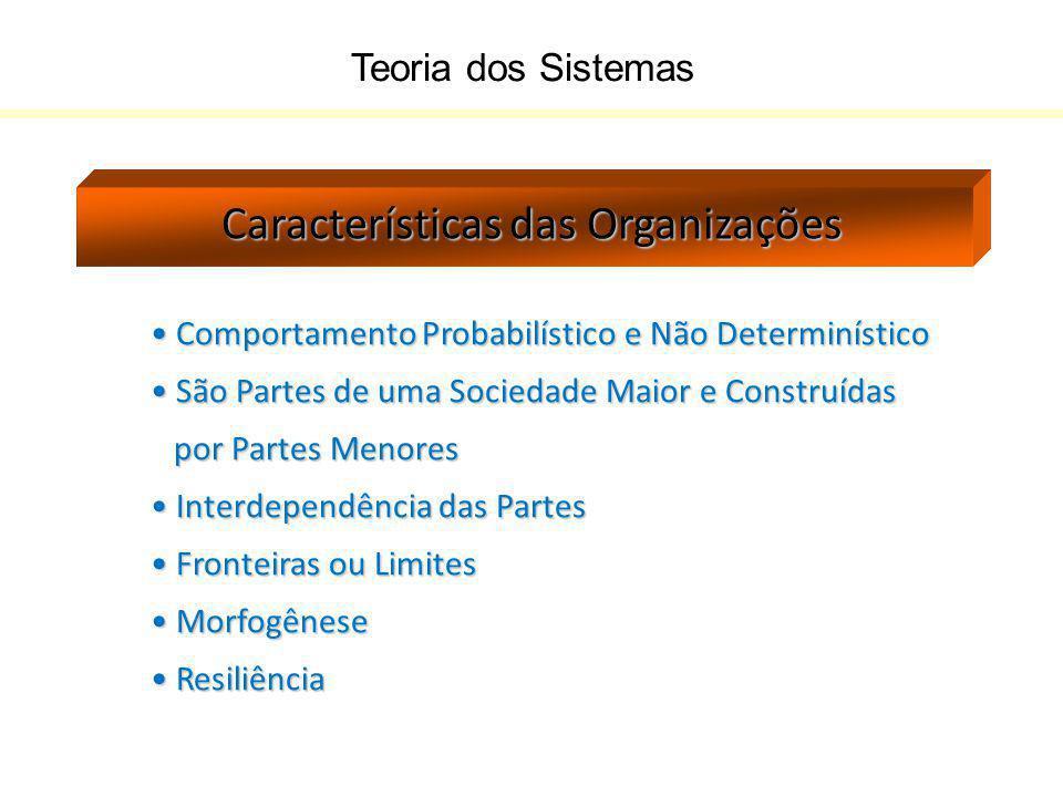 Teoria dos Sistemas Características das Organizações Comportamento Probabilístico e Não Determinístico Comportamento Probabilístico e Não Determinísti