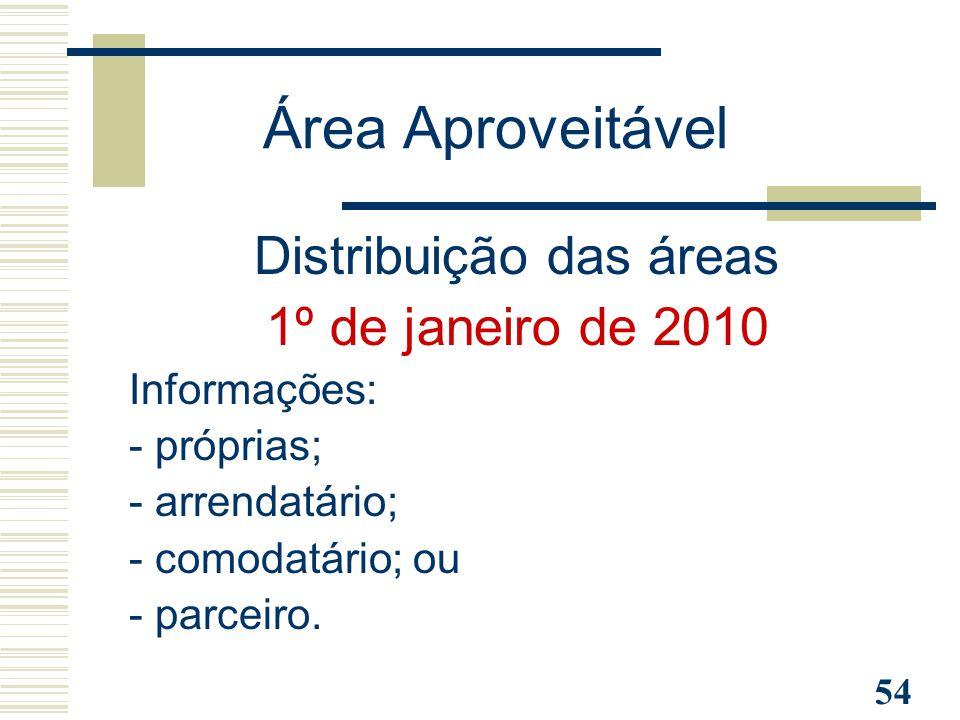 54 Distribuição das áreas 1º de janeiro de 2010 Informações: - próprias; - arrendatário; - comodatário; ou - parceiro. Área Aproveitável