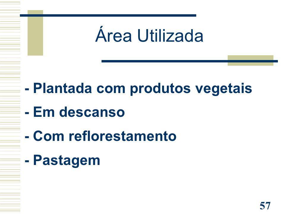 57 Área Utilizada - Plantada com produtos vegetais - Em descanso - Com reflorestamento - Pastagem