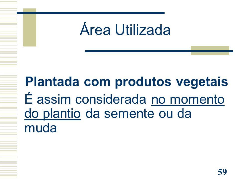59 Plantada com produtos vegetais É assim considerada no momento do plantio da semente ou da muda Área Utilizada