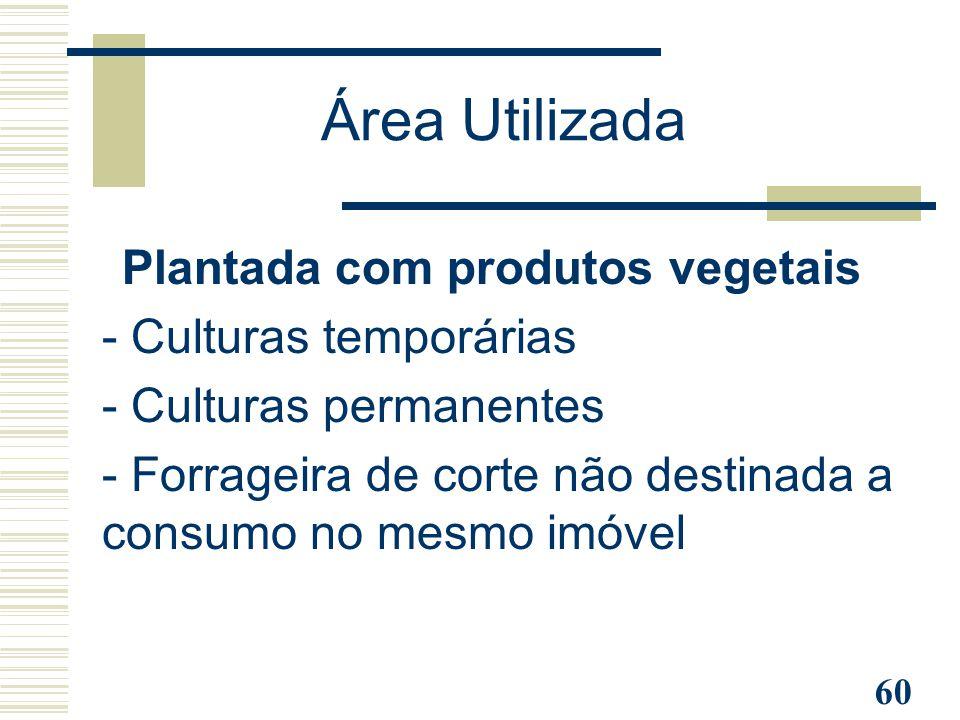 60 Plantada com produtos vegetais - Culturas temporárias - Culturas permanentes - Forrageira de corte não destinada a consumo no mesmo imóvel Área Uti