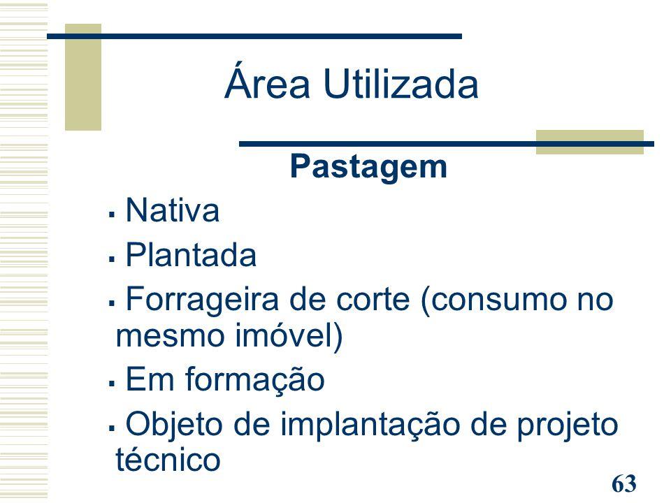 63 Pastagem  Nativa  Plantada  Forrageira de corte (consumo no mesmo imóvel)  Em formação  Objeto de implantação de projeto técnico Área Utilizad