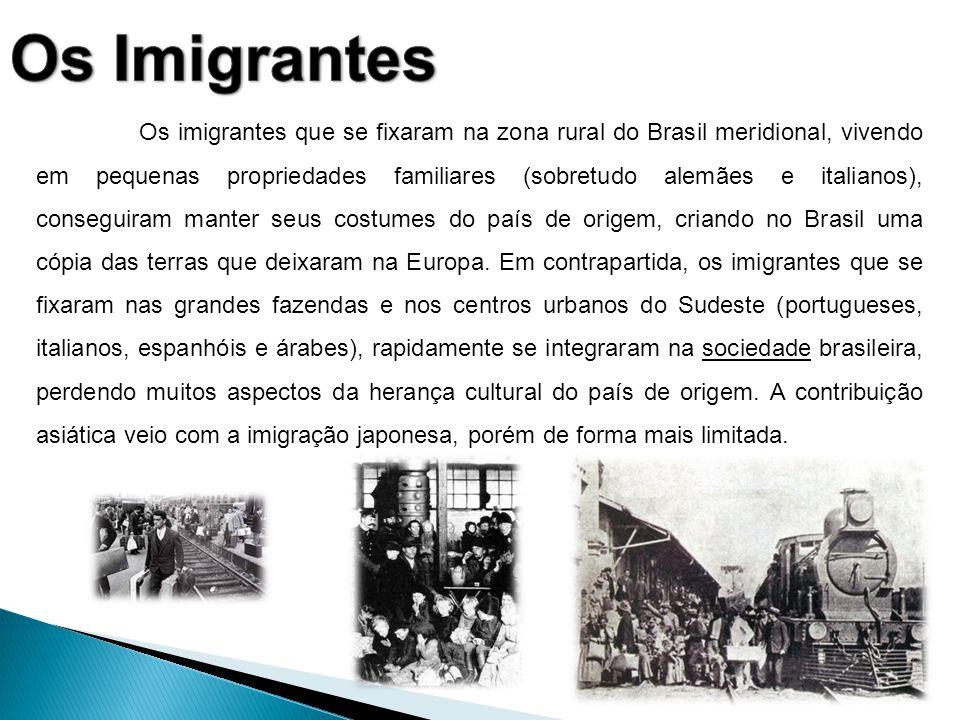 Os imigrantes que se fixaram na zona rural do Brasil meridional, vivendo em pequenas propriedades familiares (sobretudo alemães e italianos), consegui