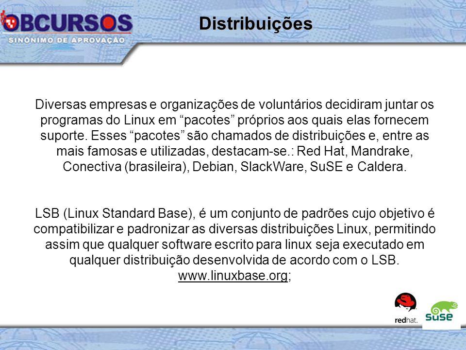 Diversas empresas e organizações de voluntários decidiram juntar os programas do Linux em pacotes próprios aos quais elas fornecem suporte.