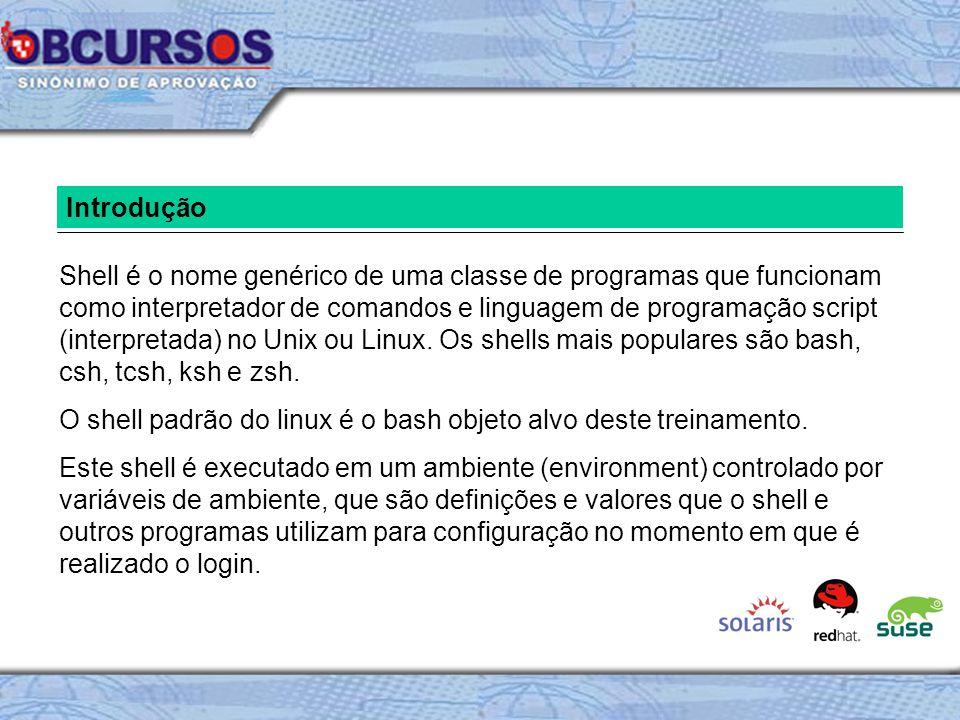 Introdução Shell é o nome genérico de uma classe de programas que funcionam como interpretador de comandos e linguagem de programação script (interpretada) no Unix ou Linux.