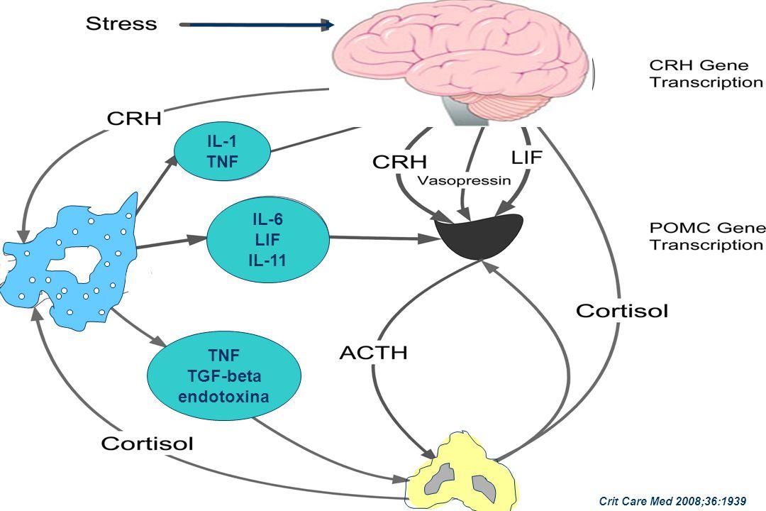 IL-1 TNF IL-6 LIF IL-11 TNF TGF-beta endotoxina Crit Care Med 2008;36:1939