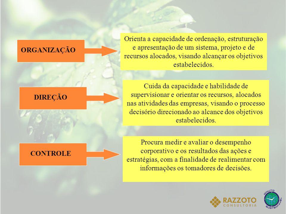 ESTRUTURA DO PLANO DE NEGÓCIOS Sumário executivo A empresa Plano de marketing Plano financeiro