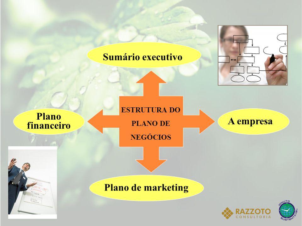 SUMÁRIO EXECUTIVO  Sintetiza os principais pontos, apresentando os cenários, a empresa e o negócio.