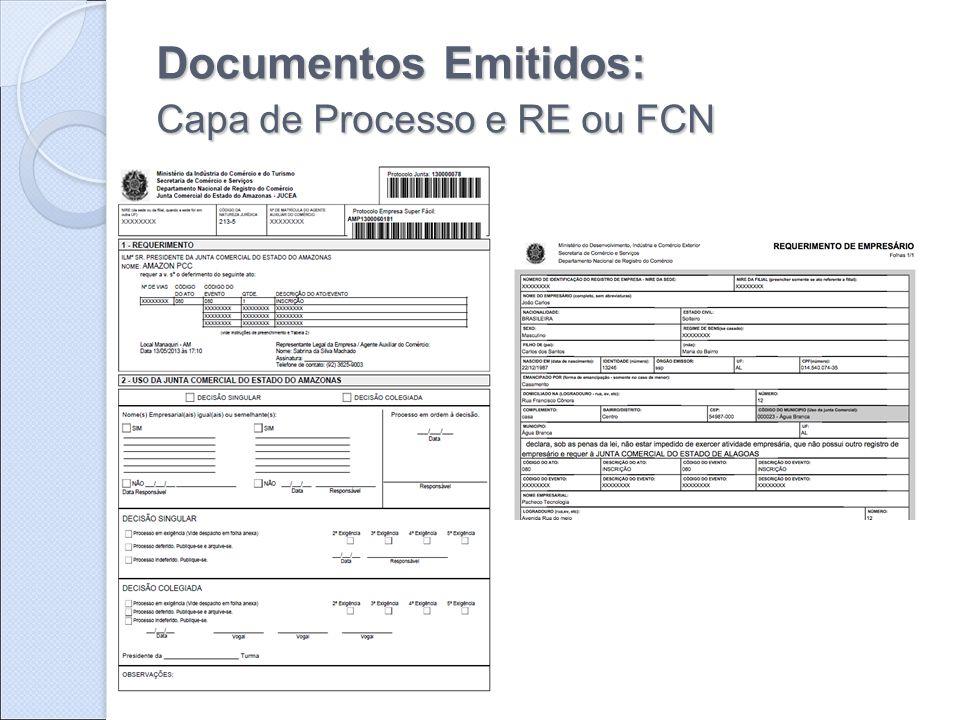 Documentos Emitidos: Capa de Processo e RE ou FCN