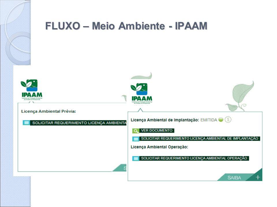 FLUXO – Meio Ambiente - IPAAM