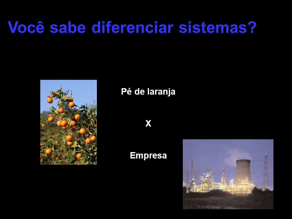 Pé de laranja X Empresa Você sabe diferenciar sistemas?