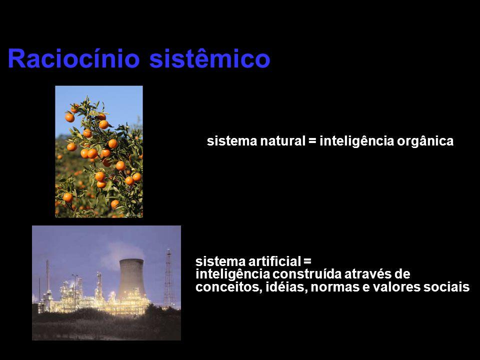 sistema natural = inteligência orgânica sistema artificial = inteligência construída através de conceitos, idéias, normas e valores sociais Raciocínio