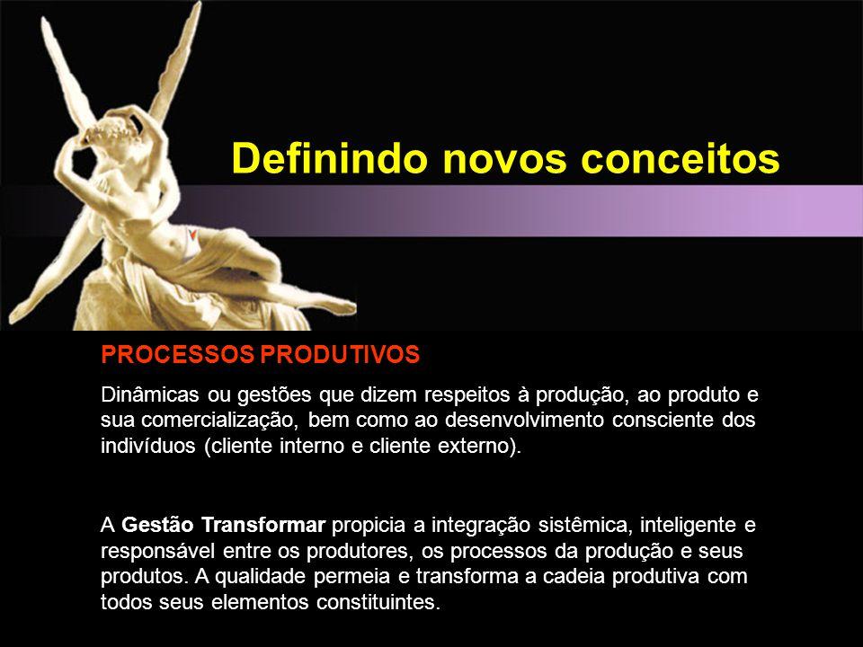 Definindo novos conceitos PROCESSOS PRODUTIVOS Dinâmicas ou gestões que dizem respeitos à produção, ao produto e sua comercialização, bem como ao dese