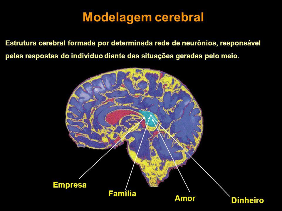Modelagem cerebral Estrutura cerebral formada por determinada rede de neurônios, responsável pelas respostas do indivíduo diante das situações geradas