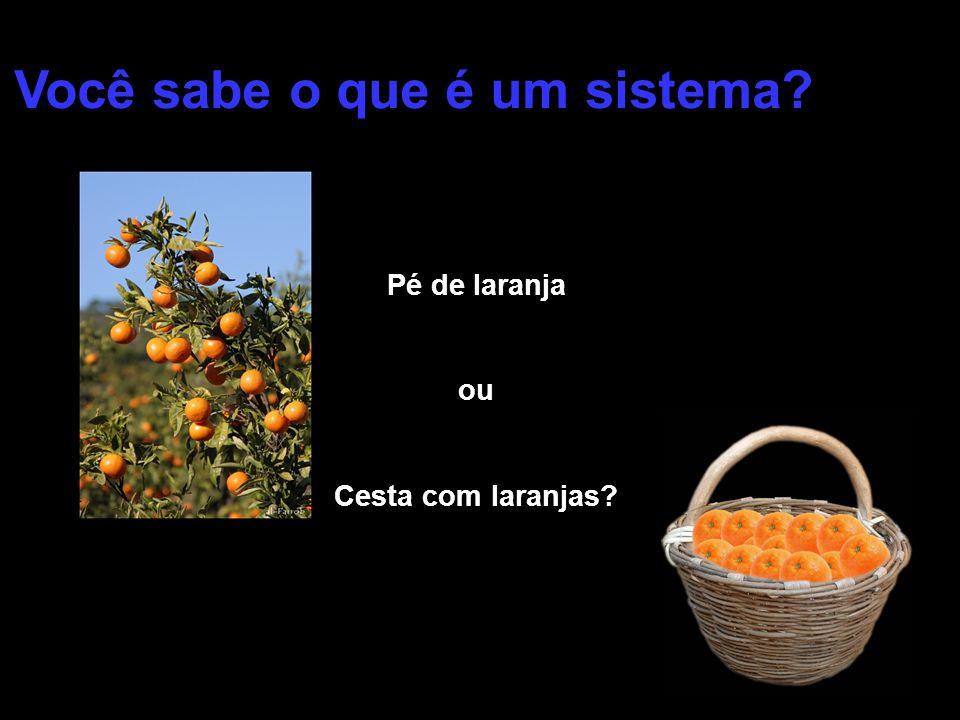 Pé de laranja ou Cesta com laranjas? Você sabe o que é um sistema?