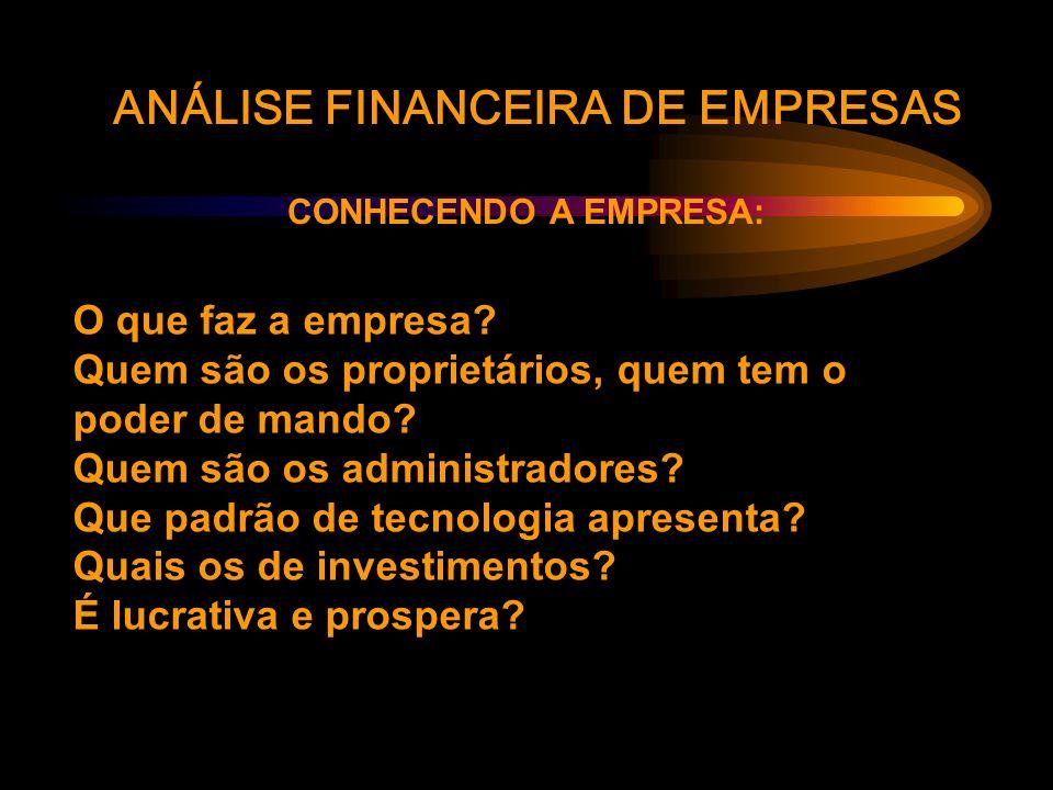 ANÁLISE FINANCEIRA DE EMPRESAS CONHECENDO A EMPRESA: O que faz a empresa.