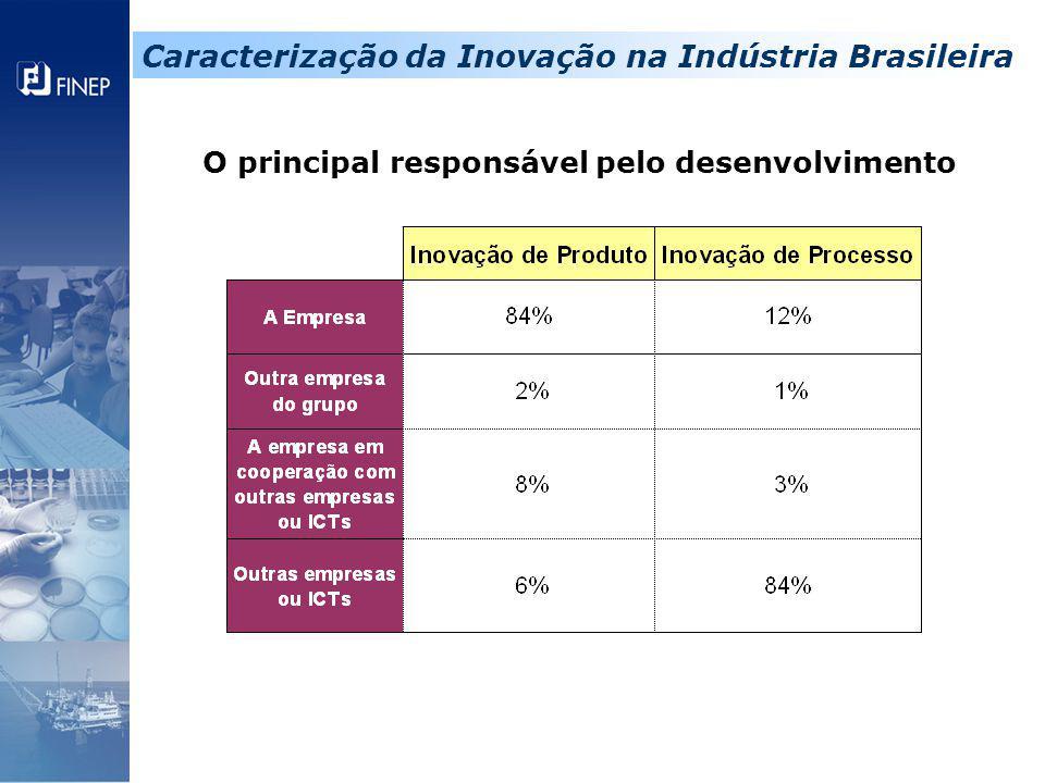 O principal responsável pelo desenvolvimento Caracterização da Inovação na Indústria Brasileira