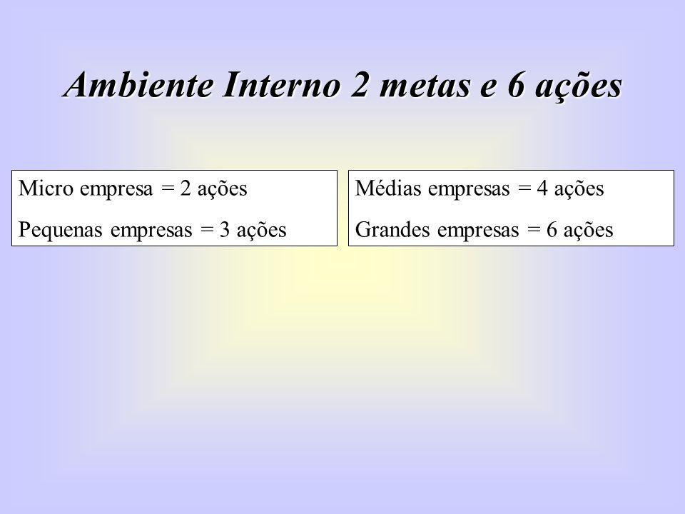 Ambiente Interno 2 metas e 6 ações Micro empresa = 2 ações Pequenas empresas = 3 ações Médias empresas = 4 ações Grandes empresas = 6 ações