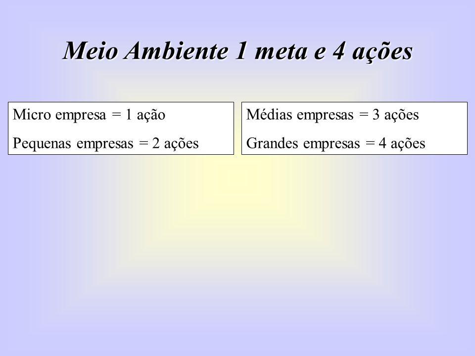 Meio Ambiente 1 meta e 4 ações Micro empresa = 1 ação Pequenas empresas = 2 ações Médias empresas = 3 ações Grandes empresas = 4 ações