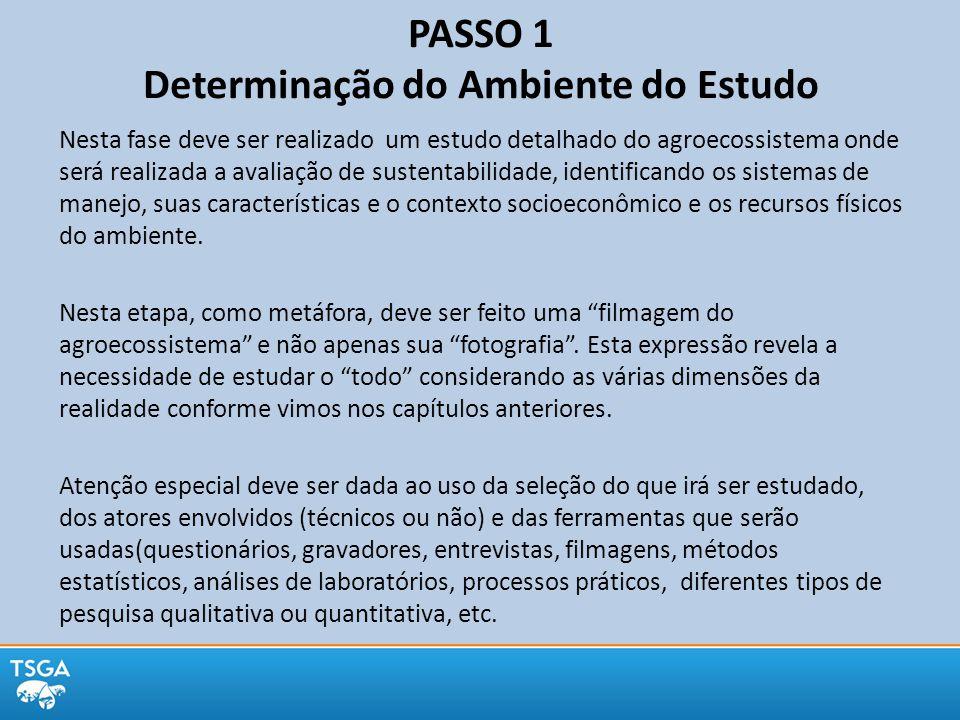 PASSO 1 Determinação do Ambiente do Estudo Nesta fase deve ser realizado um estudo detalhado do agroecossistema onde será realizada a avaliação de sus