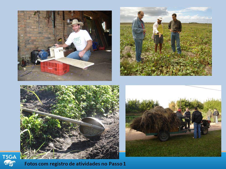 Fotos com registro de atividades no Passo 1